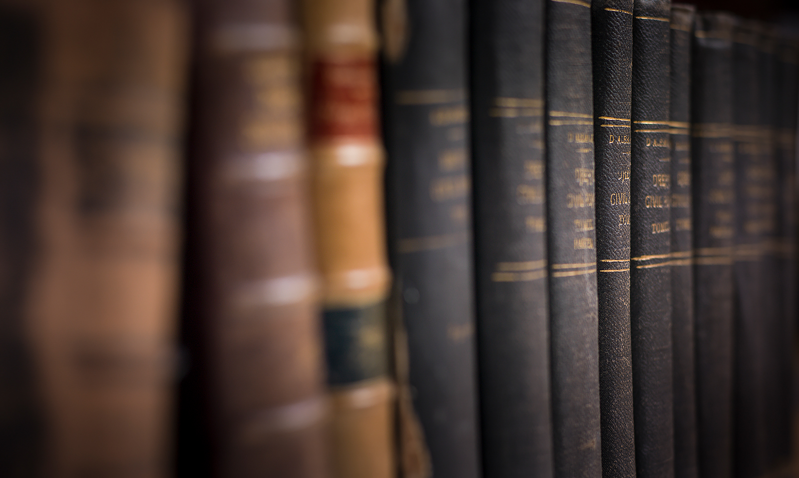Leather bound legal books